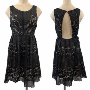 Free People black lace taupe lining dress